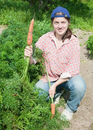 young woman is picking of  carrot in field photo