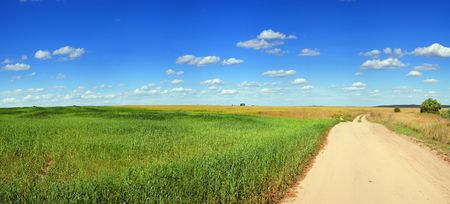 Panorama of field of green grass and blue cloudy sky Stock Photo - 6753512