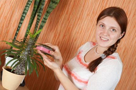 Attractive woman cleaning flowers in the pot at her home Stock Photo - 6860484