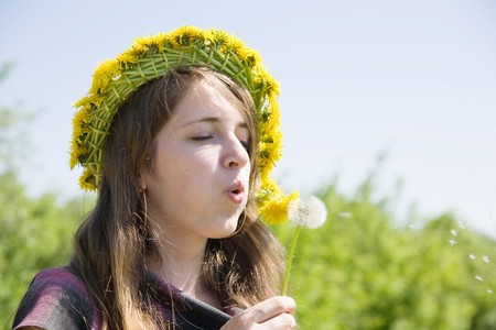 Young girl blowing seeds of a dandelion flower Stock Photo - 7065999