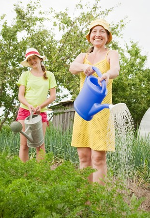 Two women watering vegetables with  watering pot photo