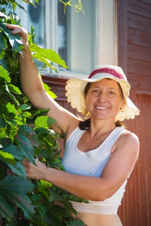 senior woman gardener with  virginia creeper in summer photo