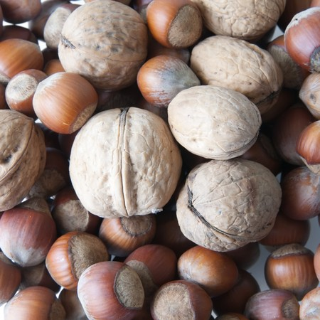 nit: Close-up of brown nuts background Stock Photo