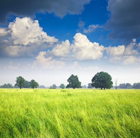 Summer landscape with meadow under cloudy sky photo
