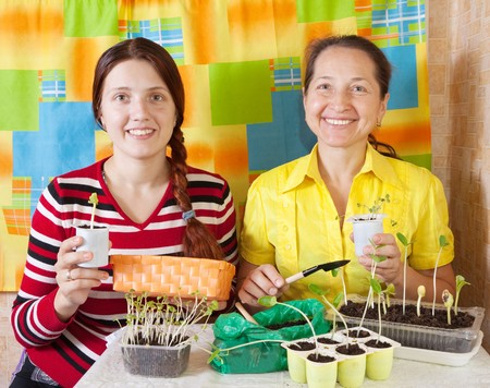 Two women  with  seedling  in her hands photo