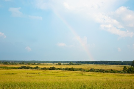 Summer landscape with meadow under clean sky Stock Photo - 8590924