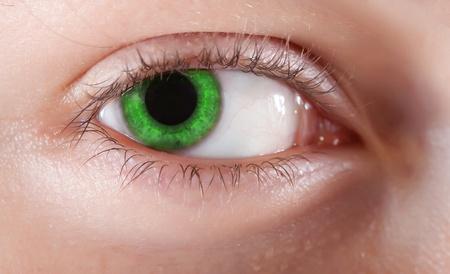 closeup of beauty girl's green eye. Macro shot Stock Photo - 8594188