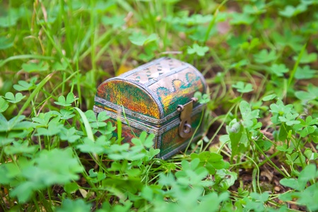 treasure chest: Old treasure chest in green  clover plant