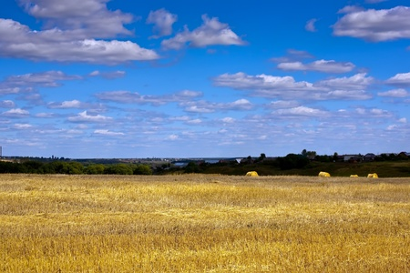 Summer landscape with field under cloudy sky photo