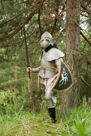 Knight in armor, ready for confrontation in pine forest Stock Photo - 9061495