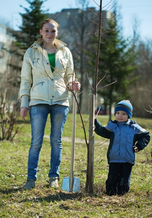mother and son with spade outdoors planting  tree Stock Photo - 9443962
