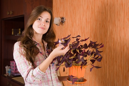 Attractive girl with oxalis flower in the pot at her home Stock Photo - 9482899