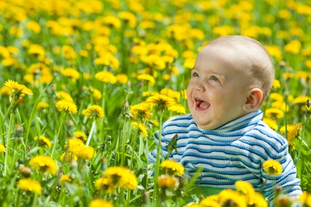 laughing baby: happy baby sitting in flowers meadow
