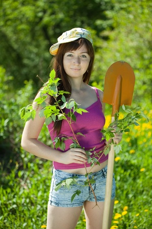 Young woman  planting  raspberry in spring photo
