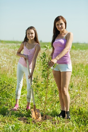 Woman and her teen daughter planting tree photo