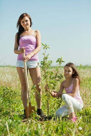 Mid adult woman with  teenager daughter setting tree outdoor photo