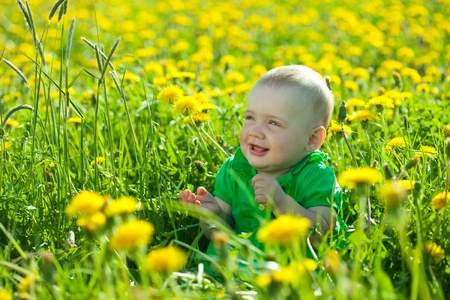 Eight months  baby girl in spring dandelion plant photo