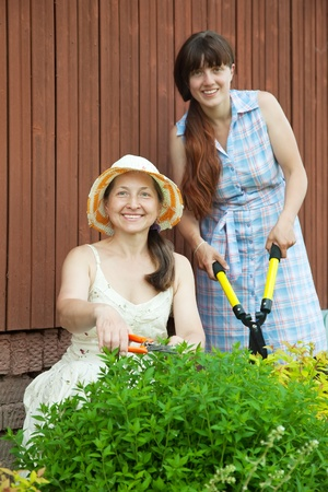 Female gardeners  working with garden tools at yard  photo