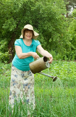 Mature woman watering  with  watering pot photo