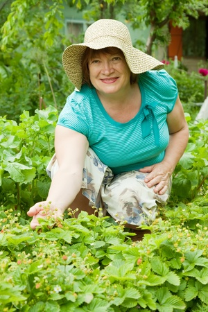 agriculturalist: Happy mature woman in strawberry plant at garden