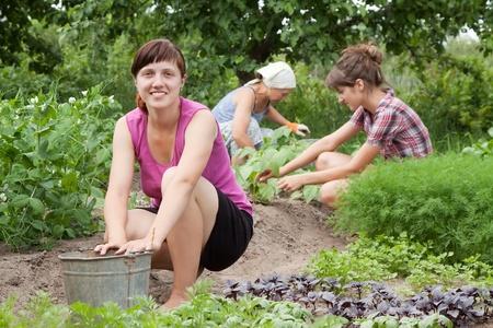 hoeing: Three women working in her vegetable garden