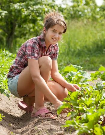 Chica adolescente trabajando en el campo de remolacha Foto de archivo - 9977123
