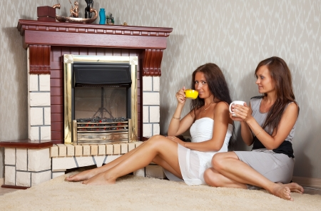 Two mid adult women near the  electric fire photo