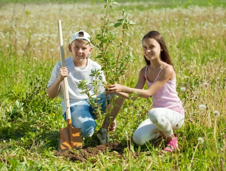 tree planting: Teenager boy and girl  setting tree outdoor Stock Photo