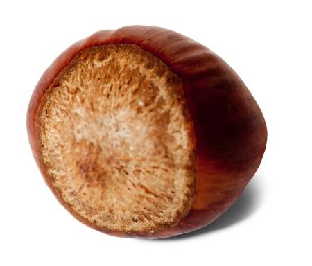 One ripe hazelnut. Isolated over white background Stock Photo - 10132649