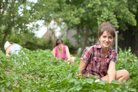 eradication: Three women working in her vegetable garden