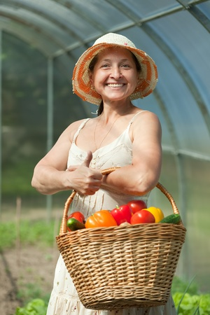 forcing bed: mature woman with basket of harvested vegetables in greenhouse