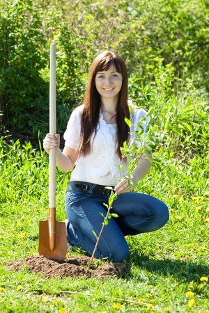 sitting on ground: Young woman sets tree outdoor in spring