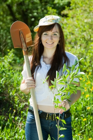 Young woman setting tree outdoor in spring photo