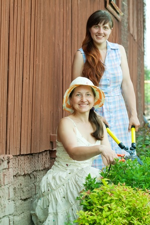 Two female  florists working in the garden photo