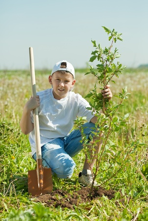 tree planting: Teen boy with spade   setting tree outdoor Stock Photo