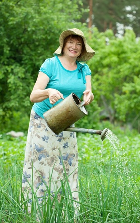 Mature woman watering vegetables with  watering pot  in field photo