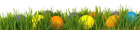 Easter border. Easter eggs in green grass over white background 写真素材