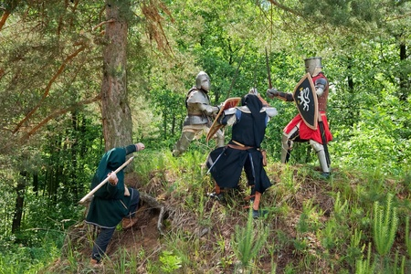 onslaught: few knights in armor is fighting  at forest