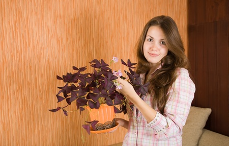 Attractive woman with oxalis flower in the pot at her home