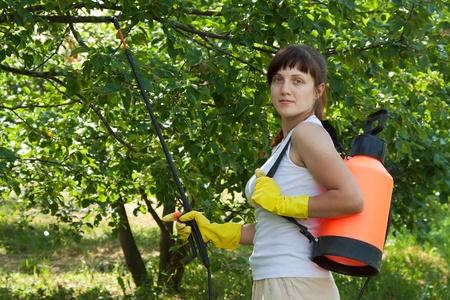 knapsack: Female gardener working in   yard with knapsack garden spray Stock Photo