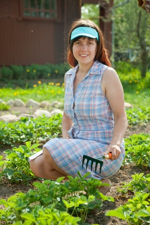 young woman prongs strawberry at garden photo