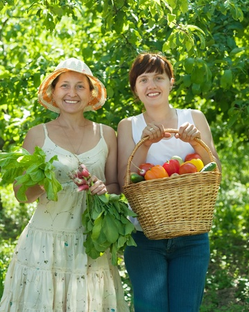 Two happy women with  harvested vegetables in garden Stock Photo - 10741814