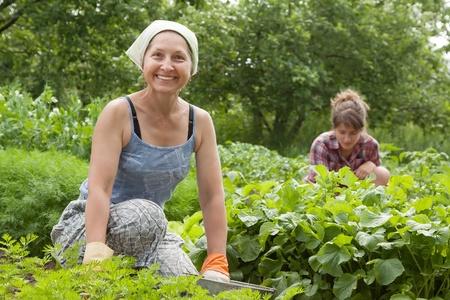 farming tools: Two women working in her vegetable garden