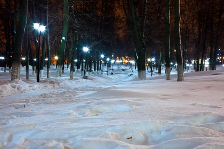 View of winter park with shining lantern. Night shot. photo