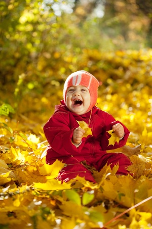 year-old baby girl on maple leaves in autumn park photo
