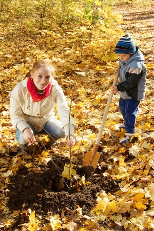 replanting: young woman with her son planting  tree in autumn garden Stock Photo