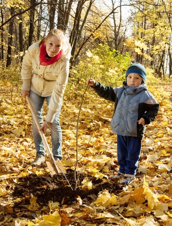woman and boy with spade outdoors planting  tree in autumn photo