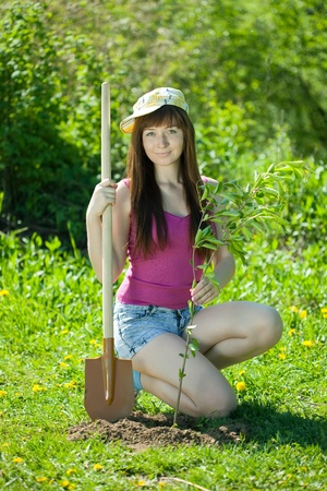 replanting: Young woman sets tree in garden Stock Photo