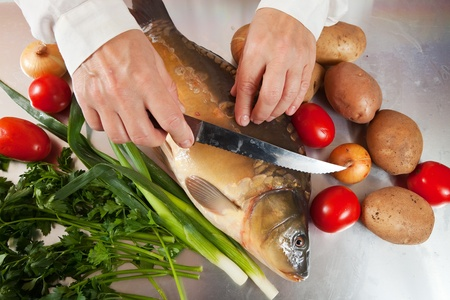 Closeup of cook cooking carp fish  in kitchen photo