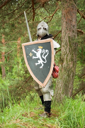 Knight in armor, ready for confrontation in pine forest photo